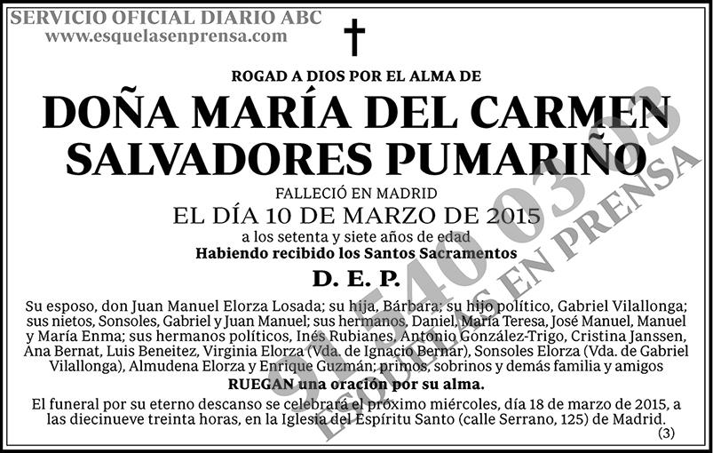 María del Carmen Salvadores Pumariño